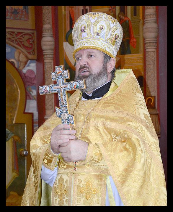 митрополит протоиерей василий данилеску
